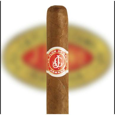 La Flor de Cano kubanische Zigarren